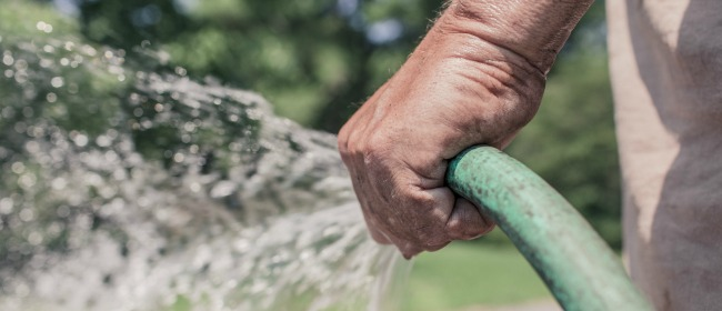 Do Your Part- Respect all Watering Restrictions!
